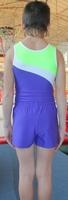 Купальник мужской для спортивной гимнастики СГМ 1.02 FENIX ST