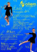 Юбка гимнастическая Ю 1.07